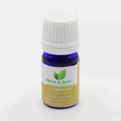 Eucalyptus lyndleana huile essentielle, Arom&Sens