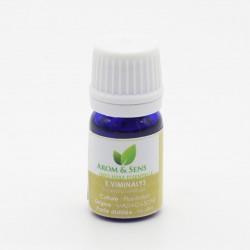 huile essentielle d'eucalyptus viminalis d'Arom&Sens