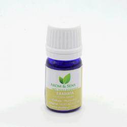 Eucalyptus radiata essential oil, Arom&Sens