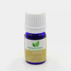 Eucalyptus siberiana essential oil, Arom&Sens